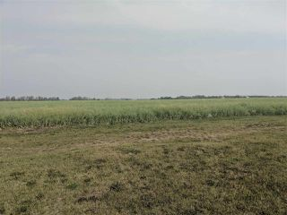 Photo 1: 110 East Street: Westlock Land Commercial for sale : MLS®# E4126057