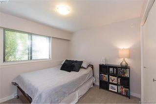Photo 18: 103 2535 Cadboro Bay Rd in VICTORIA: OB Estevan Condo for sale (Oak Bay)  : MLS®# 796671