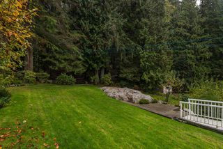 Photo 23: 734 E ST. JAMES Road in North Vancouver: Princess Park House for sale : MLS®# R2320816