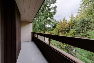 Photo 14: 313 1040 KING ALBERT Avenue in Coquitlam: Central Coquitlam Condo for sale : MLS®# R2321048