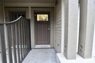 """Photo 30: 263 2501 161A Street in Surrey: Grandview Surrey Townhouse for sale in """"Highland Park"""" (South Surrey White Rock)  : MLS®# R2326295"""
