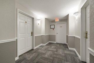 Photo 6: 112 10935 21 Avenue in Edmonton: Zone 16 Condo for sale : MLS®# E4148862