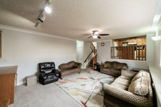 Photo 14: 1042 JAMES Crescent in Edmonton: Zone 29 House for sale : MLS®# E4151960