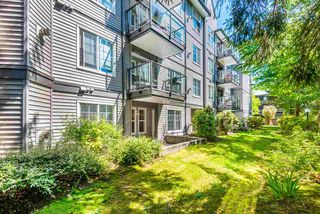 "Photo 18: 113 20200 56 Avenue in Langley: Langley City Condo for sale in ""THE BENTLEY"" : MLS®# R2369284"