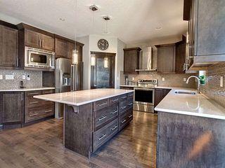 Photo 9: 2305 Cameron Ravine Cove in Edmonton: Zone 20 House for sale : MLS®# E4156996