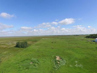 Photo 5: Twp Rd 470 Rge Rd 244: Rural Wetaskiwin County Rural Land/Vacant Lot for sale : MLS®# E4164092