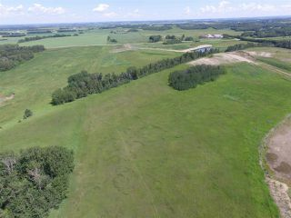 Photo 9: Twp Rd 470 Rge Rd 244: Rural Wetaskiwin County Rural Land/Vacant Lot for sale : MLS®# E4164092