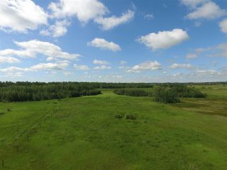Photo 4: Twp Rd 470 Rge Rd 244: Rural Wetaskiwin County Rural Land/Vacant Lot for sale : MLS®# E4164092