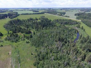 Photo 10: Twp Rd 470 Rge Rd 244: Rural Wetaskiwin County Rural Land/Vacant Lot for sale : MLS®# E4164092