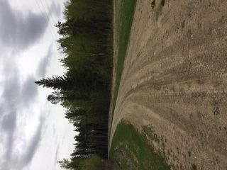 Photo 7: Range Road 34 TWP 482: Rural Leduc County Rural Land/Vacant Lot for sale : MLS®# E4173220