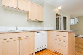Photo 9: 208 9730 106 Street in Edmonton: Zone 12 Condo for sale : MLS®# E4181189
