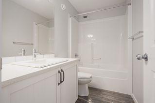 Photo 8: 3392 ERLANGER Bend in Edmonton: Zone 57 House for sale : MLS®# E4190052