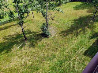 Photo 15: 415 392 KILLOREN Crescent in Prince George: Heritage Condo for sale (PG City West (Zone 71))  : MLS®# R2490206