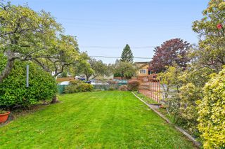 Photo 5: 517 Comerford St in : Es Saxe Point House for sale (Esquimalt)  : MLS®# 860171