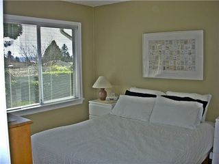 Photo 9: 1310 MATHERS Ave in West Vancouver: Ambleside Home for sale ()  : MLS®# V942490