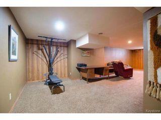 Photo 16: 251 Dussault Avenue in WINNIPEG: Windsor Park / Southdale / Island Lakes Residential for sale (South East Winnipeg)  : MLS®# 1409904