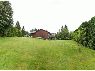 Photo 20: 35262 MCKEE Place in Abbotsford: Abbotsford East House for sale : MLS®# F1414461