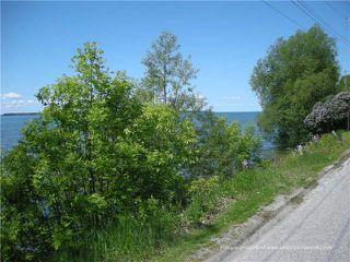 Photo 10: 1283 Ramara County Rd.#47 Road in Ramara: Brechin House (Bungalow) for sale : MLS®# X3424213