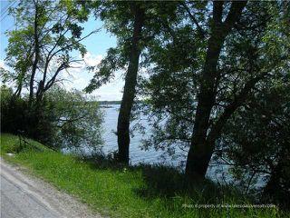 Photo 5: 1283 Ramara County Rd.#47 Road in Ramara: Brechin House (Bungalow) for sale : MLS®# X3424213