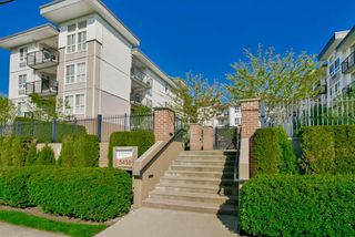 "Photo 1: 312 5430 201 Street in Langley: Langley City Condo for sale in ""The Sonnet"" : MLS®# R2118846"