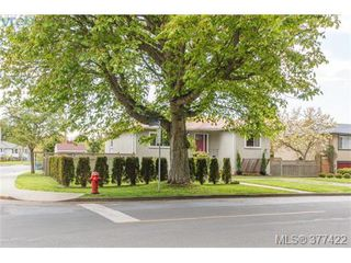 Photo 18: 1849 Gonzales Avenue in VICTORIA: Vi Fairfield East Single Family Detached for sale (Victoria)  : MLS®# 377422