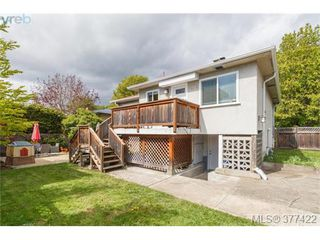 Photo 19: 1849 Gonzales Avenue in VICTORIA: Vi Fairfield East Single Family Detached for sale (Victoria)  : MLS®# 377422