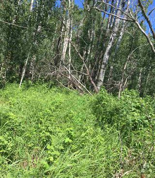 Photo 14: Lot 6 645048 Rge Rd 200: Rural Athabasca County Rural Land/Vacant Lot for sale : MLS®# E4069751
