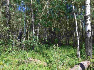 Photo 6: Lot 6 645048 Rge Rd 200: Rural Athabasca County Rural Land/Vacant Lot for sale : MLS®# E4069751