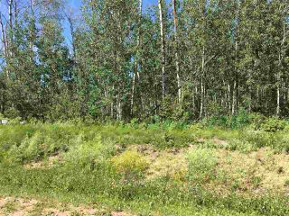 Photo 2: Lot 6 645048 Rge Rd 200: Rural Athabasca County Rural Land/Vacant Lot for sale : MLS®# E4069751