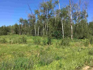 Photo 13: Lot 6 645048 Rge Rd 200: Rural Athabasca County Rural Land/Vacant Lot for sale : MLS®# E4069751