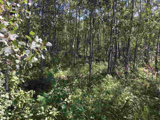 Photo 10: Lot 6 645048 Rge Rd 200: Rural Athabasca County Rural Land/Vacant Lot for sale : MLS®# E4069751