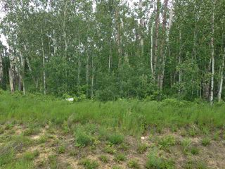 Photo 3: Lot 6 645048 Rge Rd 200: Rural Athabasca County Rural Land/Vacant Lot for sale : MLS®# E4069751