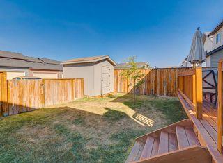 Photo 28: 240 SILVERADO RANGE Close SW in Calgary: Silverado House for sale : MLS®# C4135232