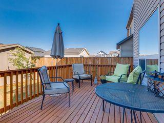 Photo 29: 240 SILVERADO RANGE Close SW in Calgary: Silverado House for sale : MLS®# C4135232