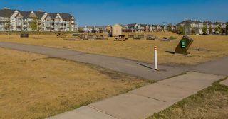 Photo 31: 240 SILVERADO RANGE Close SW in Calgary: Silverado House for sale : MLS®# C4135232