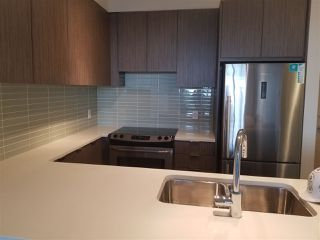 Photo 4: 308 9168 SLOPES MEWS in Burnaby: Simon Fraser Univer. Condo for sale (Burnaby North)  : MLS®# R2201456