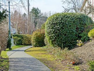 Photo 19: 29 1480 Garnet Road in VICTORIA: SE Cedar Hill Townhouse for sale (Saanich East)  : MLS®# 388792
