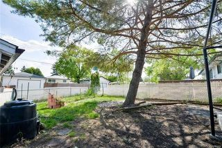 Photo 16: 75 Amarynth Crescent in Winnipeg: Crestview Residential for sale (5H)  : MLS®# 1813661