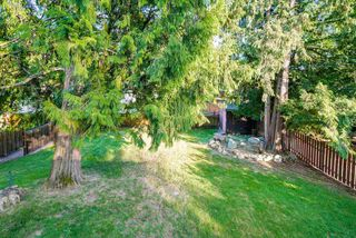 Photo 19: 882 GLENCOE Drive in Port Moody: Glenayre House for sale : MLS®# R2272914