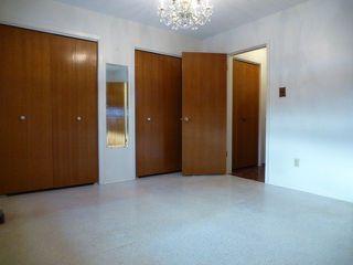 Photo 14: 10924 38 Avenue NW in Edmonton: Zone 16 House for sale : MLS®# E4145168