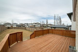 Photo 24: 347 HUDSON Bend in Edmonton: Zone 27 House for sale : MLS®# E4154498