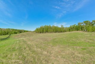Photo 12: 13 1118 TWP RD 534 Road: Rural Parkland County Rural Land/Vacant Lot for sale : MLS®# E4155394