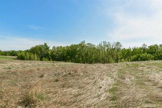 Photo 9: 13 1118 TWP RD 534 Road: Rural Parkland County Rural Land/Vacant Lot for sale : MLS®# E4155394