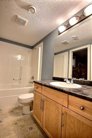 Photo 20: 9509 101 Street in Edmonton: Zone 12 House for sale : MLS®# E4156940