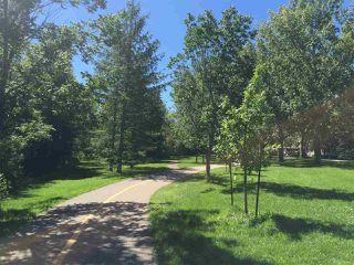 Photo 4: 9413 101 Street in Edmonton: Zone 12 House for sale : MLS®# E4157210