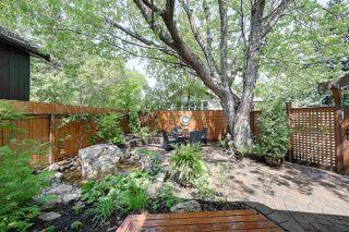 Photo 10: 14228 RAVINE Drive in Edmonton: Zone 21 House for sale : MLS®# E4159628