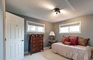 Photo 19: 14228 RAVINE Drive in Edmonton: Zone 21 House for sale : MLS®# E4159628
