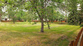 Photo 20: 1124 68 Street in Edmonton: Zone 29 House for sale : MLS®# E4159697