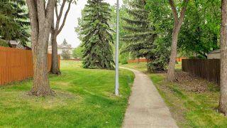 Photo 4: 1124 68 Street in Edmonton: Zone 29 House for sale : MLS®# E4159697