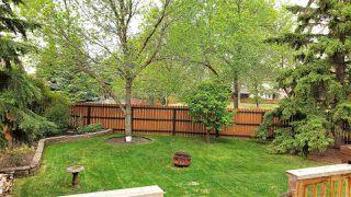 Photo 3: 1124 68 Street in Edmonton: Zone 29 House for sale : MLS®# E4159697